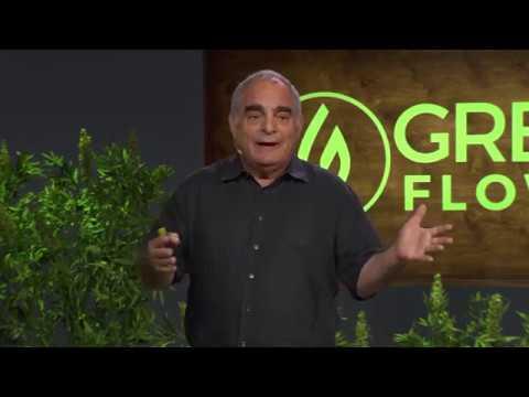 Τα βασικά για την Κανναβιδιόλη (CBD) από τον Dr. Allan Frankel (video)